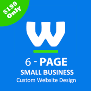 Affordable Website Designer - Custom Website Design For $199
